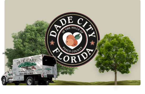 tree care by robert miller truck with dade city logo