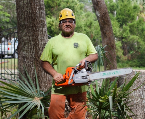Tree worker with chainsaw