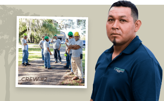 Tree Care Crew 2 - Brooksville, Florida
