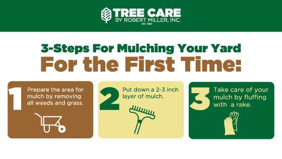 Steps for mulching yard