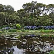 Parc botanique de Cornouailles