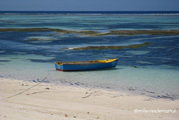 barque seychelles