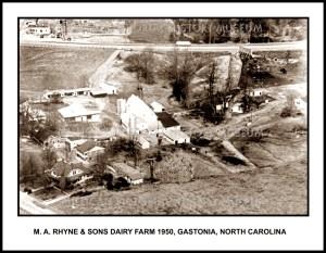 Dairy Farms & Farms