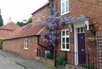 Wisteria climbing up a house in the village