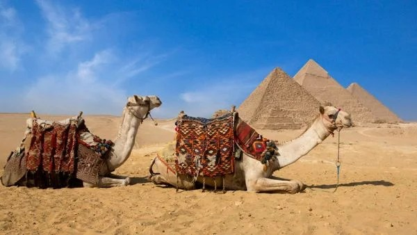 4 Beautiful Ritz-Carlton Hotels in the Middle East