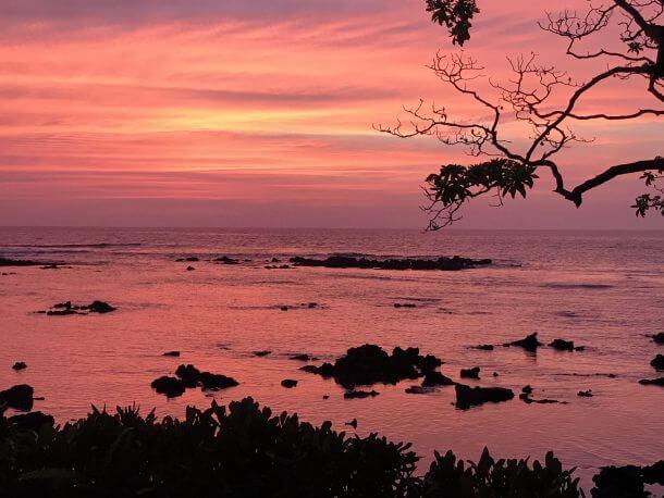 13 Free Nights In Hawaii Reader Success Story