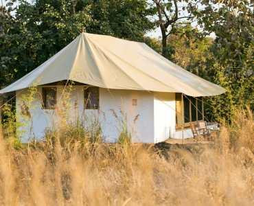 Jamtara Wilderness Camp, Pench, India, Wildlife, Safari
