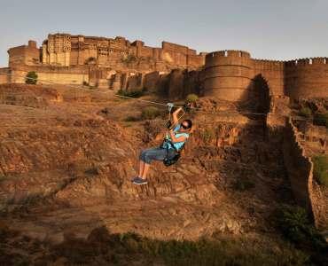 Flying Fox Jodhpur, Rajasthan, India