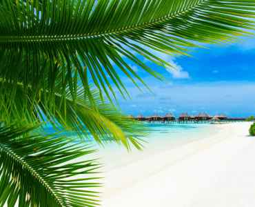 Sri Lanka and the Maldives Honeymoon, Luxury Holidays