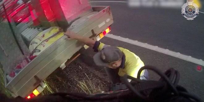 Lucha contra una serpiente venenosa mientras conduce a más de 120 km por hora