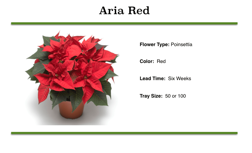 Aria Red