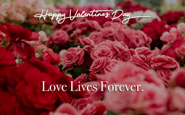 Love Lives forever variation