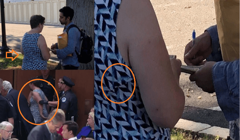 Eyewitnesses saw 'protestors' being instructed and paid to protest Kavanaugh