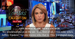 ABC News anchor caught on hot mic saying network killed Epstein bombshell story