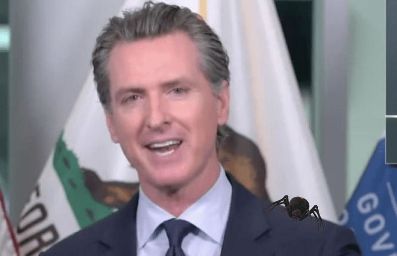 Gavin Newsom Is Super Pissed Federal Judge Ruled 'Assault Weapons Ban' Unconstitutional