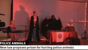Australian News Network Accidentally Ran Footage Of Satanic Ritual During Segment