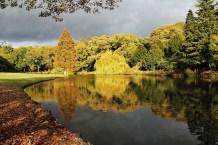 Temple Newsam Autumn Lake 3_11_2012