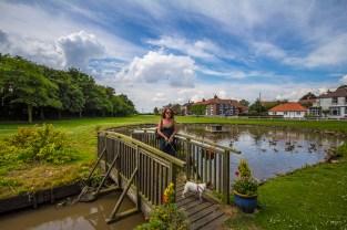 Wold Newton Pond