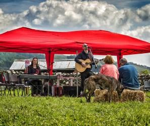 Hay Bale Music Festival at Kettlewell Mayfest © Carl Milner 2015