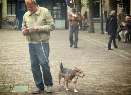 Шетање кучета за губљење килаже