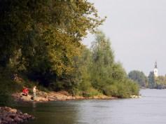 Dunav kod Futoga
