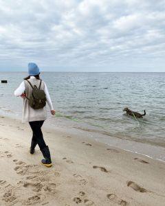 Strand am Lister Ellenbogen