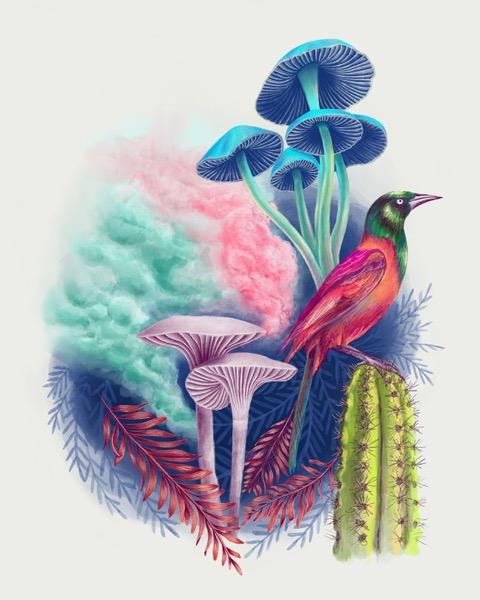 Digital Painting, bird
