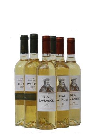 suvine kerge valge vein