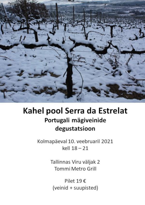 veinidegustatsioon Tallinnas