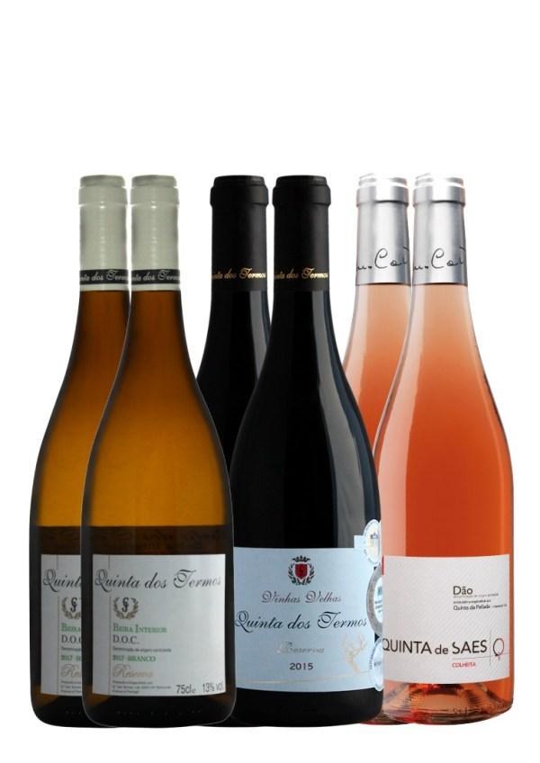 aasta vein 2021