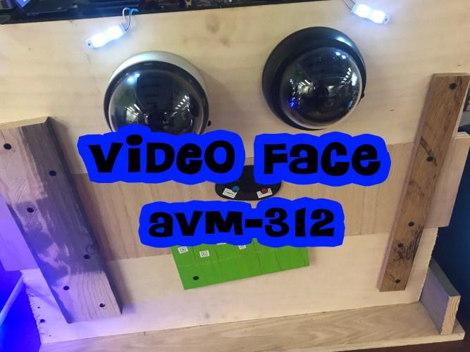 VIDEO FACE [AVM-312]