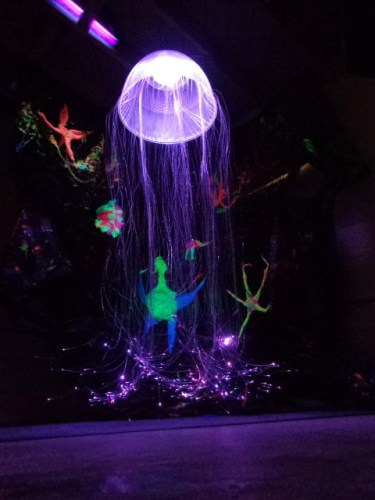 Jellyfish (Under the Sea)