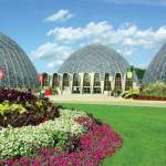 Milwaukee Domes Repair and Replacement Options Require Public Input