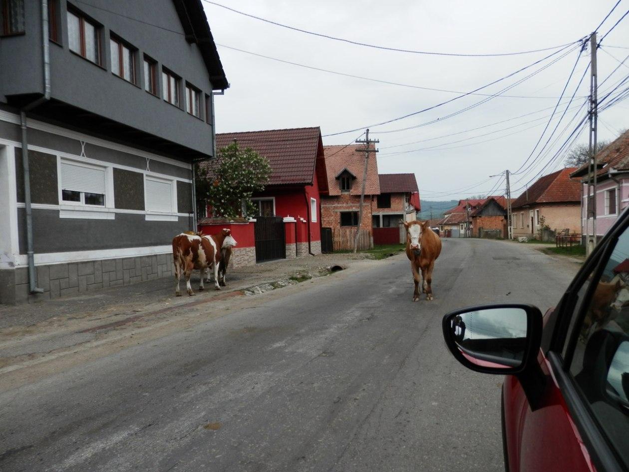Rumania carreteras