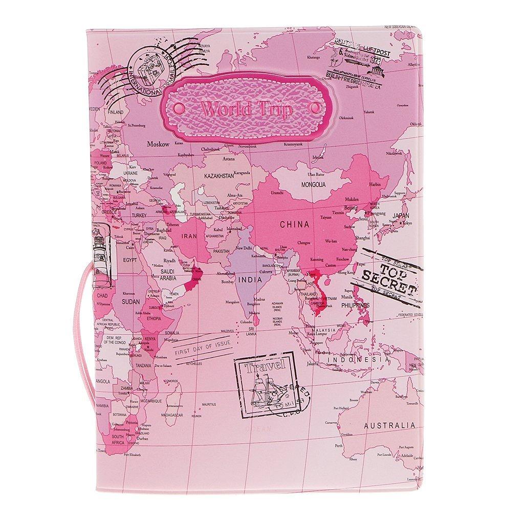 passport2_