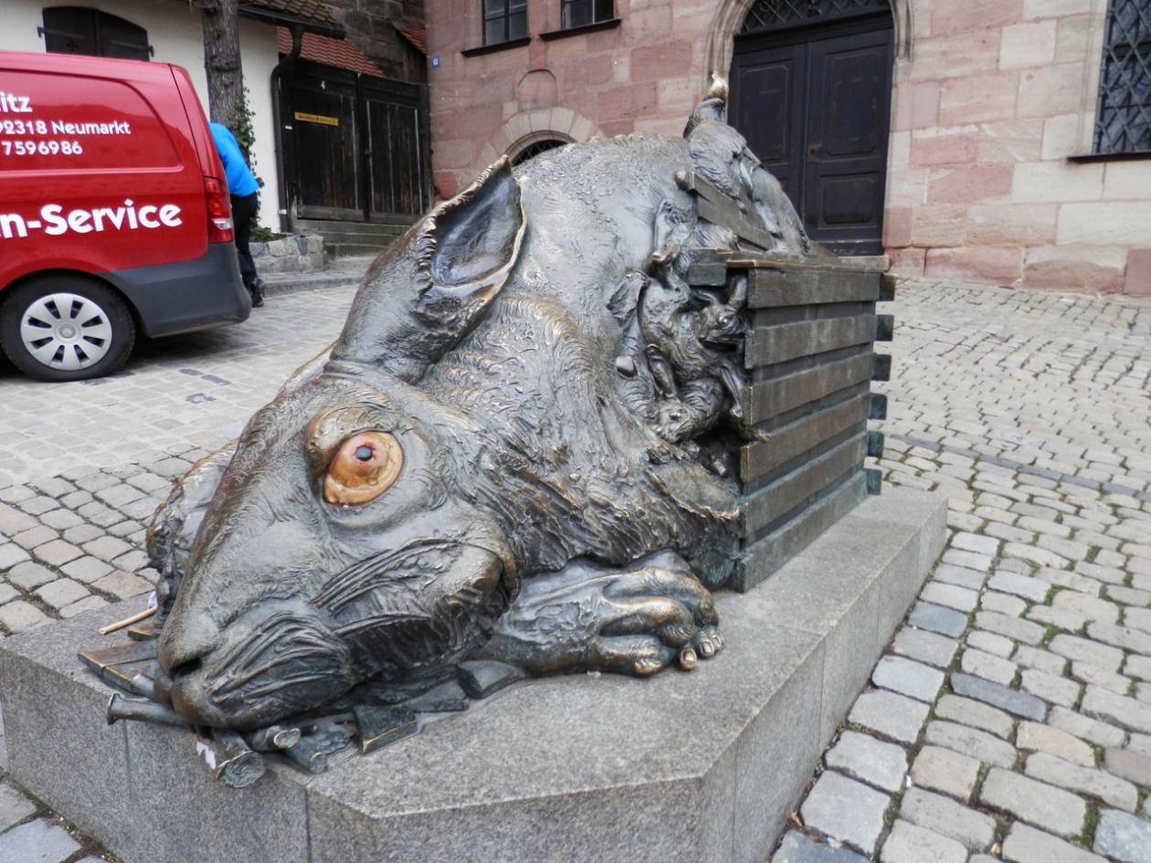 Der Hase Nuremberg