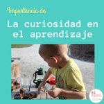 Importancia de la curiosidad en el aprendizaje