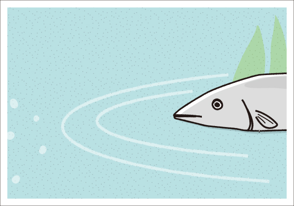 【4コマ漫画】きょうのおさかな#01-2
