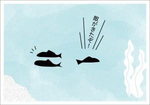 【4コマ漫画】きょうのおさかな#11-1