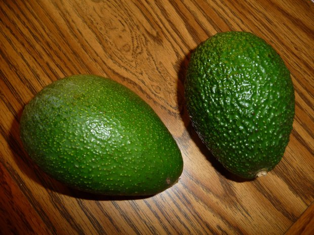 Fuerte and Hass Avocados