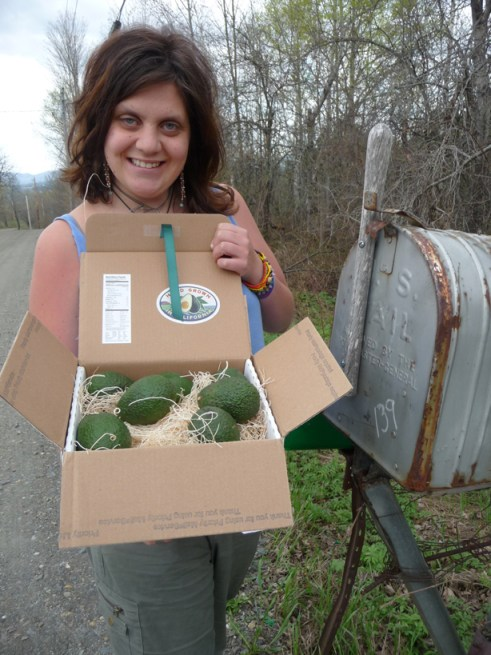 avocados from the mailbox