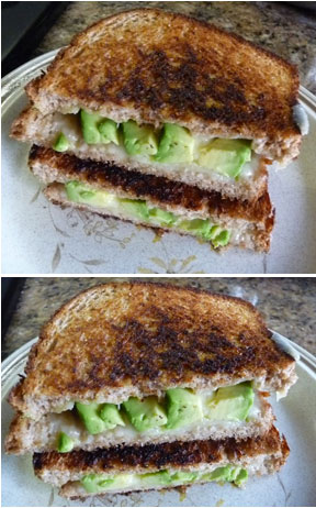 grilled cheese and avocado sandwiches
