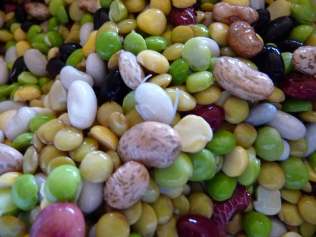 Beautiful beans, peas and lentils