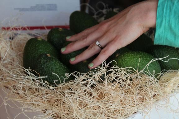 syling avocados