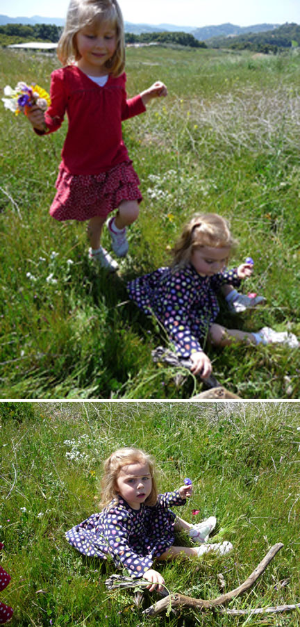 Bug and Squirrel picking flowers...and sticks