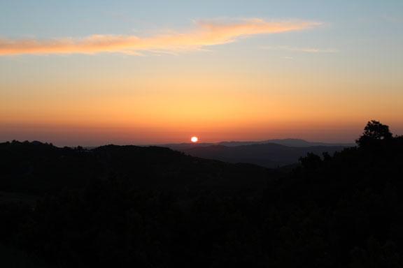 sunset on avocado ranch