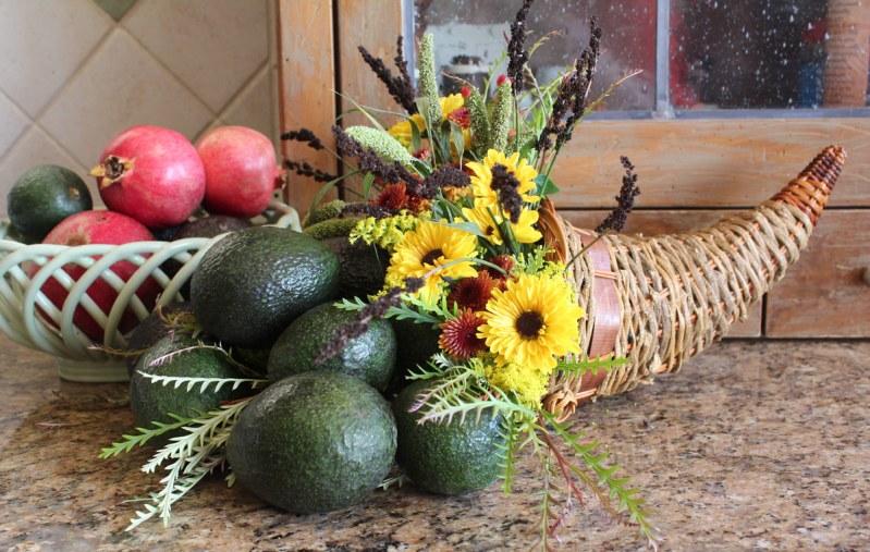 avocado cornucopia