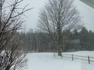 SnowyVermontDay