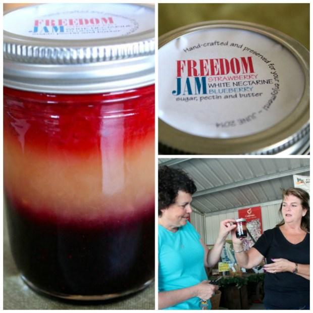 Freedom-Jam-Collage-4
