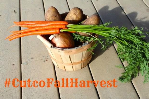 harvest basket #cutcofallharvest